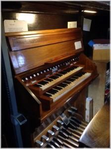 Organo-004